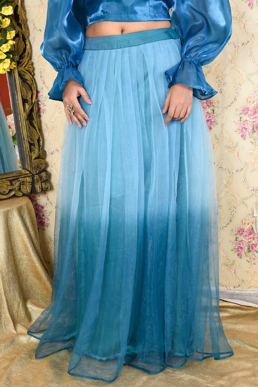 Ombre organza Long Skirt